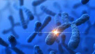 Azospermiye neden olan genleri araştırıyoruz!