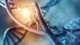 Sperm DNA Fragmantasyonu