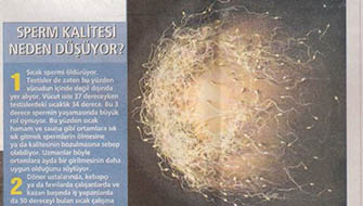 Sperm Kalitesi Neden Düşüyor?