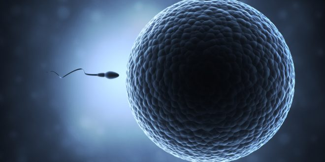 Vaz Deferens Agenezisi (Doğuştan sperm kanalı yokluğu)