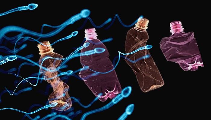 Plastik ve Bisfenol-A Prostat Kanseri ve Kısırlığa Neden Oluyor