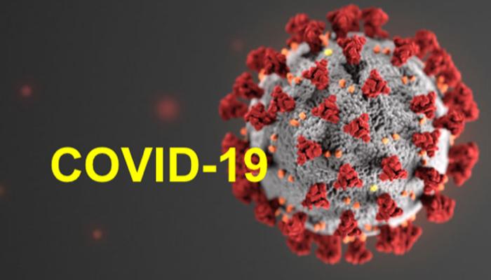 SARS-COV-2 Virüsü Semende Tespit Edilmedi